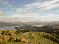 Views over Akaroa on our way up Stony Peak