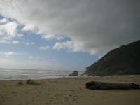 KohaihaiBeach-NorthernWestCoast (8 of 40)