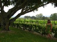WineTasting-Motueka (4 of 5)