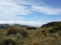 Atop Stony Peak