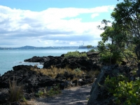 Looking back from Rangitoto