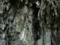 CathedralCaves-Catlins (13 of 28)
