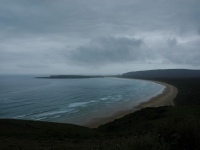Catlins (1 of 2)
