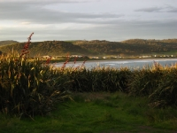 CurioBay-Catlins (4 of 15)