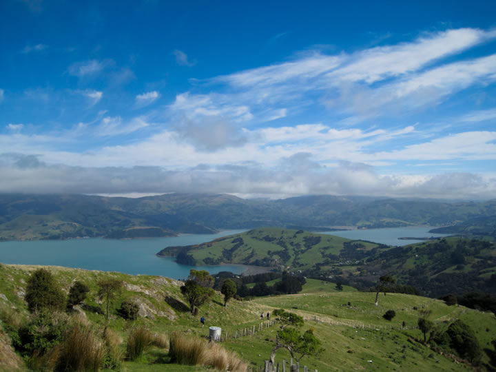 Akaroa Skyline Walk 1