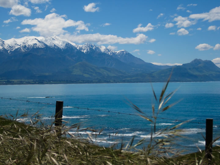 Walking around Kaikoura 3