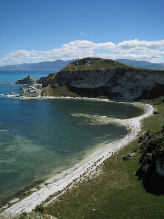 Walking around Kaikoura 5