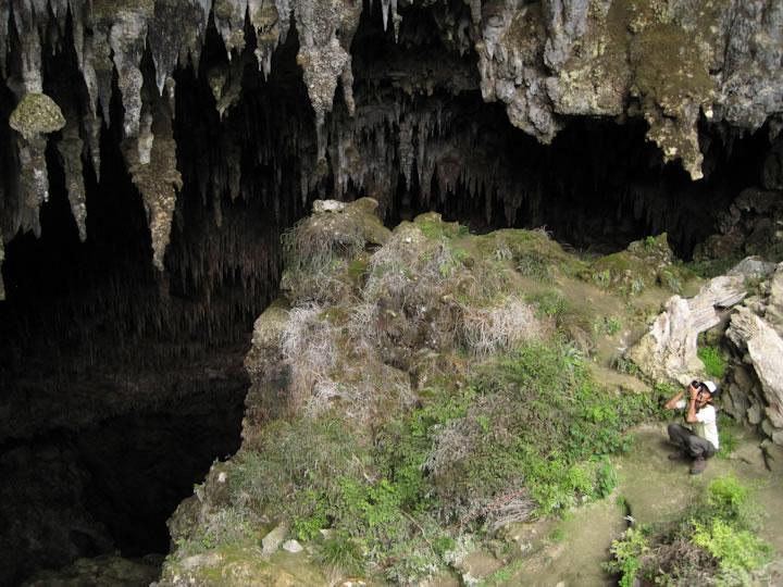 Rawhiti Cave 2