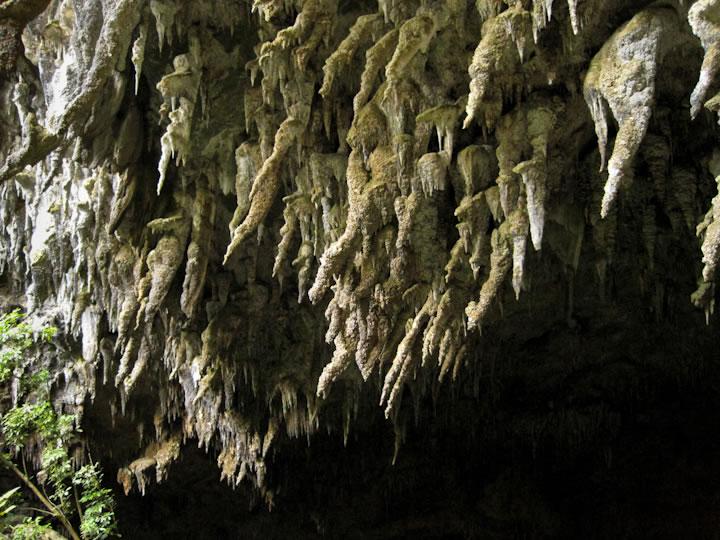 Rawhiti Cave 3