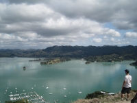 Looking out over Whangaroa