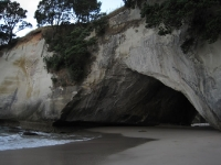 Cathedral Cove images