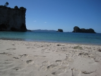 Stingray beach