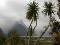 MilfordSound-FiordlandNP (1 of 106)