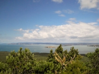 Rangitoto summit views