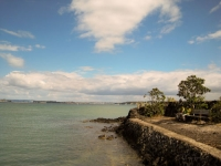 Rangitoto harbor