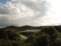 Wwoofer views