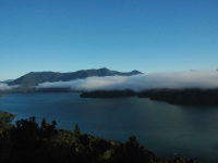 Queen Charlotte Track - Early Morning Magic