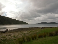 Ships Cove - Queen Charlotte Track