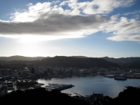 Wellington views