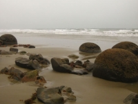MoerakiBoulders (13 of 21)