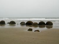 MoerakiBoulders (4 of 21)