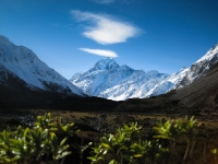 Vally views of Mt. Cook