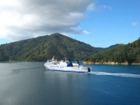 Cook Straight & the InterIslander Ferry