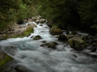 LakeMarianFalls-MilfordRoad-FiordlandNP (16 of 16)